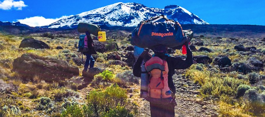Porters carrying the load up Kilimanjaro
